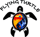 Flying Turtle TCM Acupuncture Services | Massage Therapy | Reiki Services Red Deer