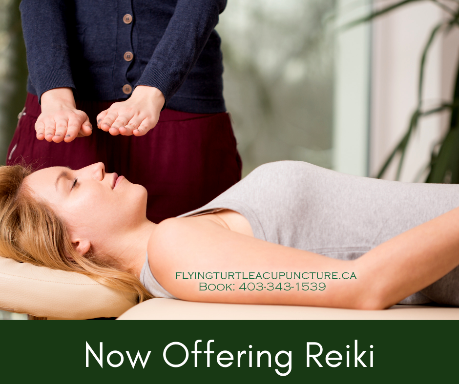 Reiki Services Red Deer - Flying Turtle